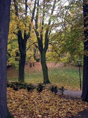 http://www.garten.cz/images_data/1765-podzimni-scenerie.jpg