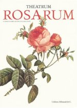 Theatrum Rosarum: Le Rose Antiche E. Moderne
