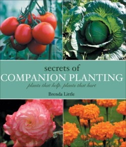 Secrets of Companion Planting: Plants That Help, Plants That Hurt