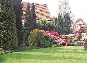 Trávník - nejkrásnější koberec přírody