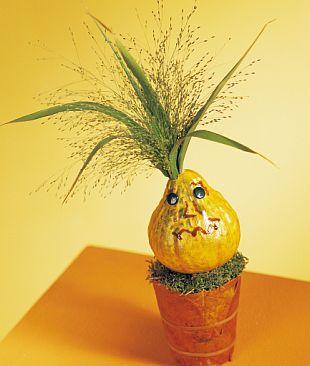 Květinové dekorace: dýně s účesy z travin a květin ( KNIŽNÍ ...