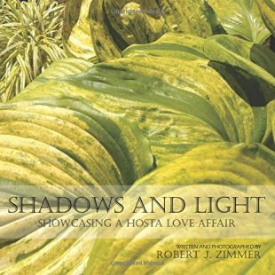 Shadows and Light: Showcasing a Hosta Love Affair