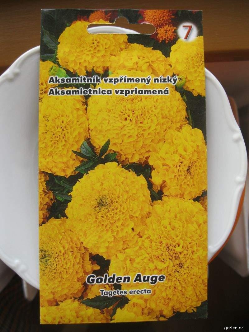 Aksamitník vzpřímený nízký (Tagetes erecta nana)