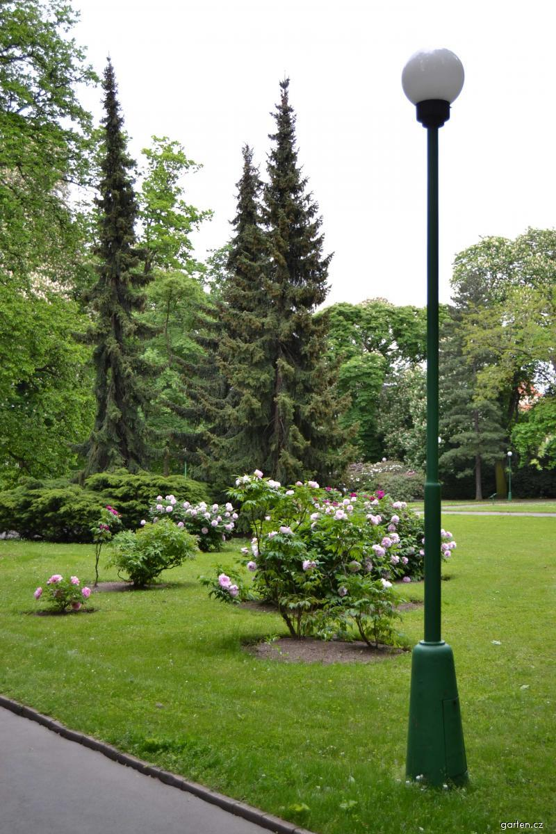 Forum obr zek kr lovsk zahrada for Garten forum